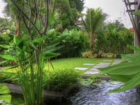 05-front-garden-view-from-aquatic-pond