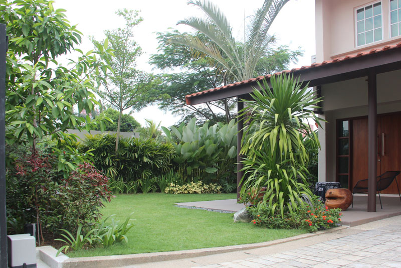 Jalan Tanah Puteh Esmond Landscape And Horticultural Pte