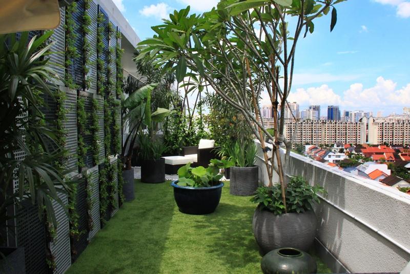 midview city  u00ab esmond landscape and horticultural pte ltd singapore