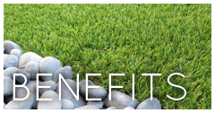 Esmond Turf Benefits
